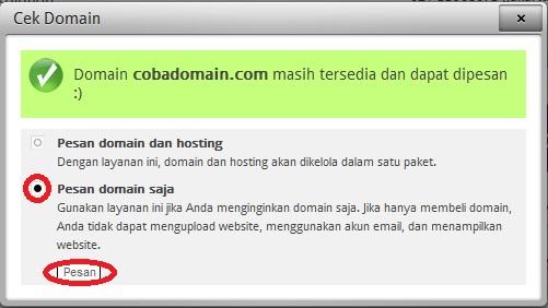 pesan domain